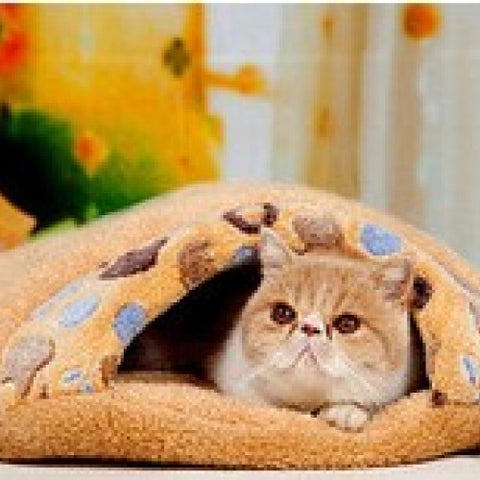 Cat Bed Soft Coral Fleece Sleeping Bag