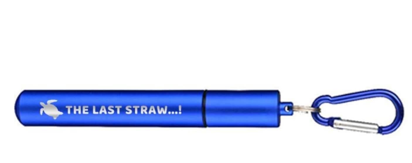 Stainless Steel Pocket Straw