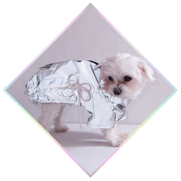 PUP ::: TREQ COAT ::: reflective