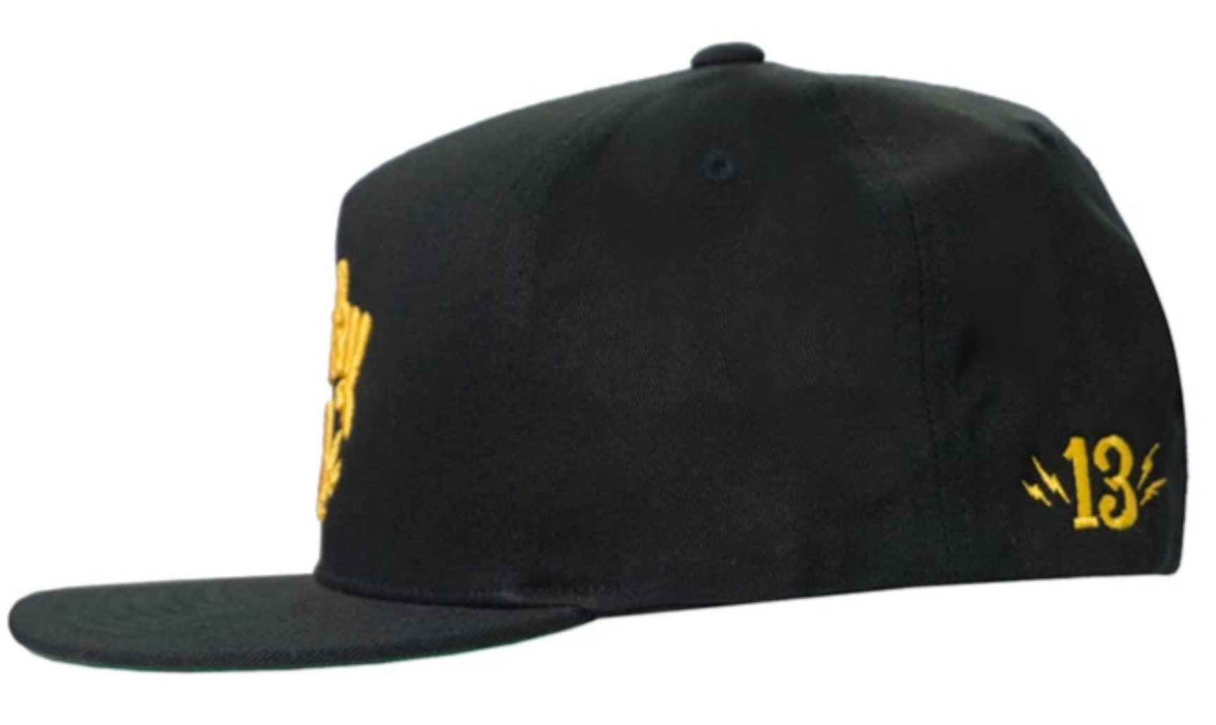 The SHOCKER 3-D Cap - BLACK/GOLD