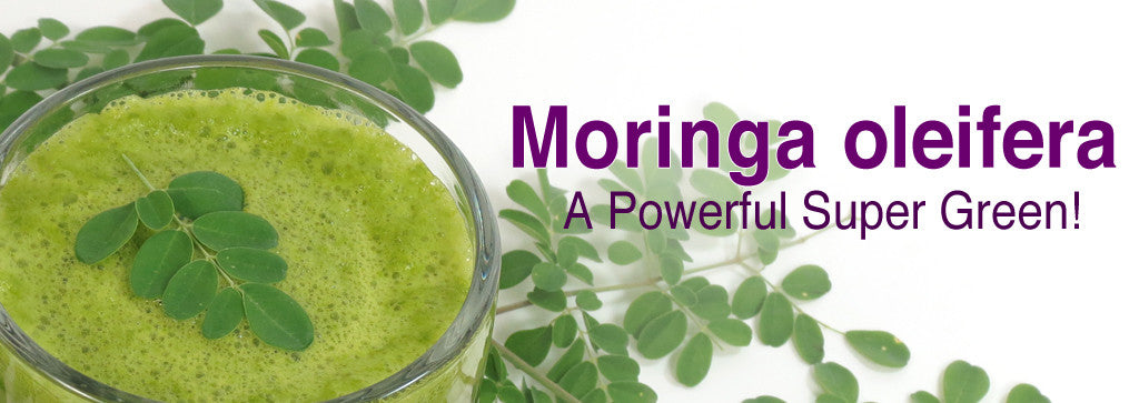 Why Is Moringa A Super Green?