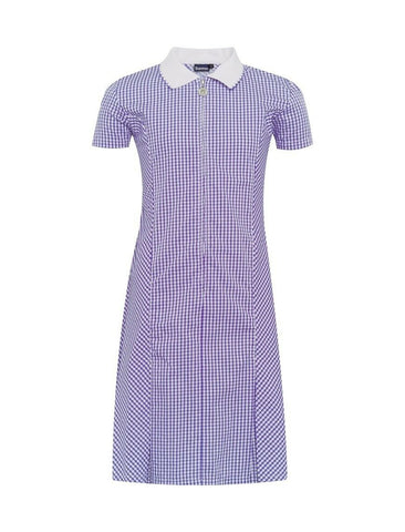 Banner Zip-Fronted Royal Blue Gingham Dress
