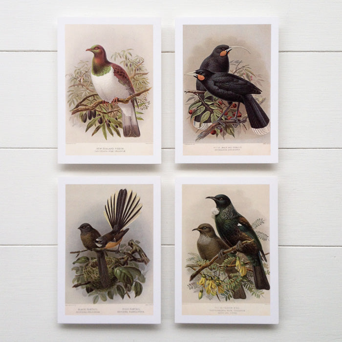 Buller's Birds Greeting Cards, Set of 8