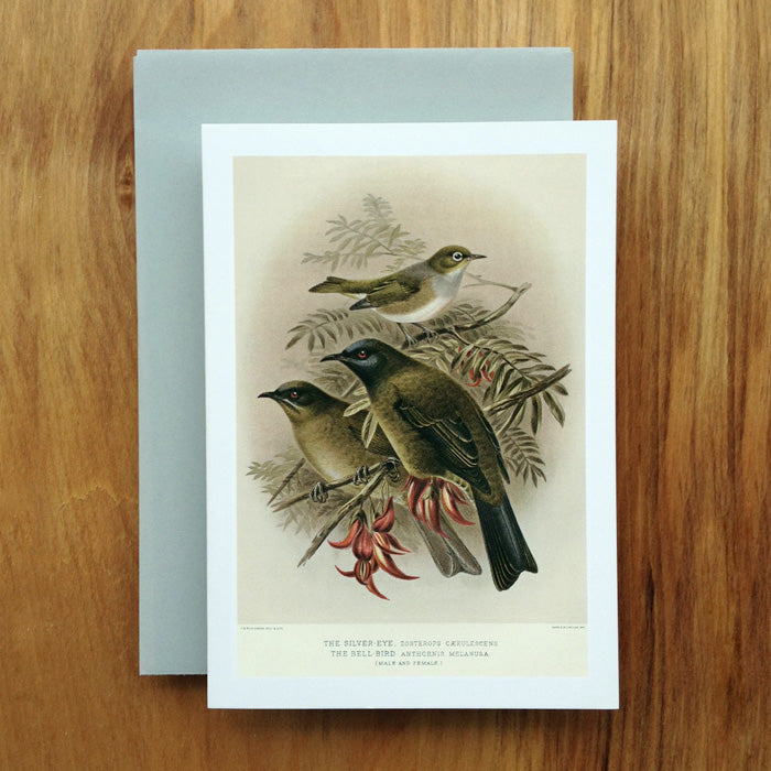 Bellbird and Silvereye Greeting Card, Buller's Birds