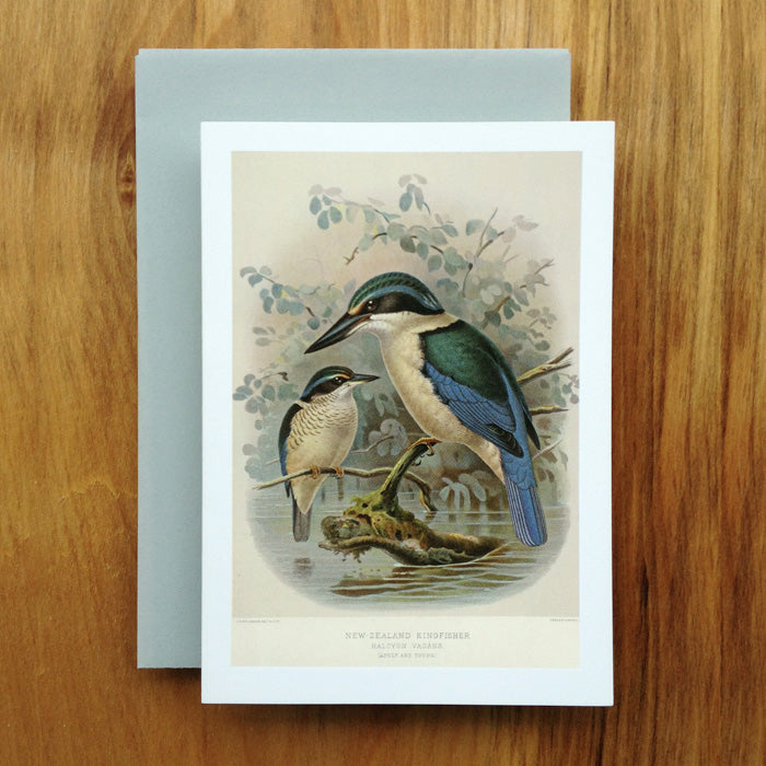 New Zealand Kingfisher Greeting Card, Buller's Birds