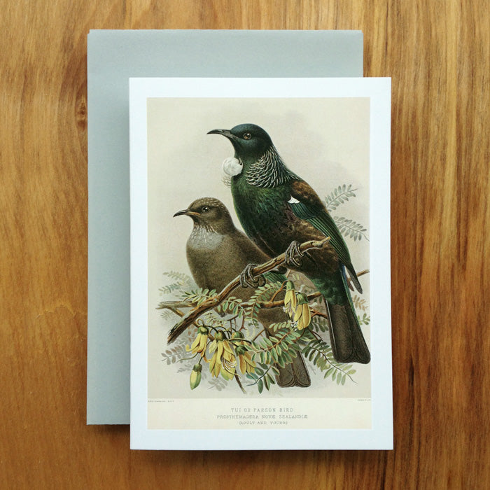 Tui Greeting Card, Buller's Birds
