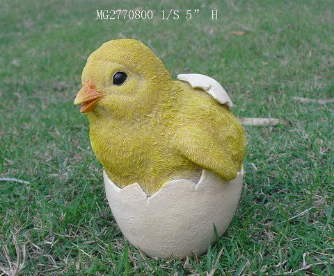 Baby Chick out of its Shell