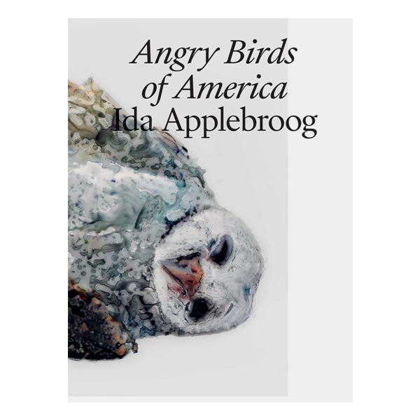 Ida Applebroog: Angry Birds of America - Jo Applin