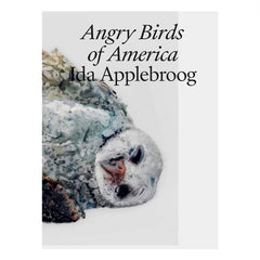 Ida Applebroog: Angry Birds of America - Jo Applin, painting of dead bird