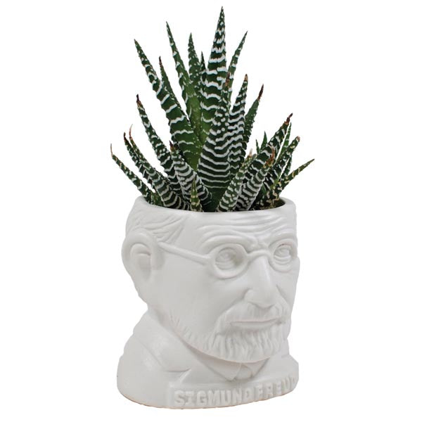 Sigmund Freud Ceramic Planter