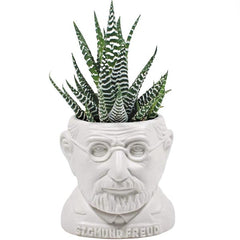Sigmund Freud sculpture as a Ceramic Planter for a mini cactus (not sold with cactus) by the unemployed philosopher's guild