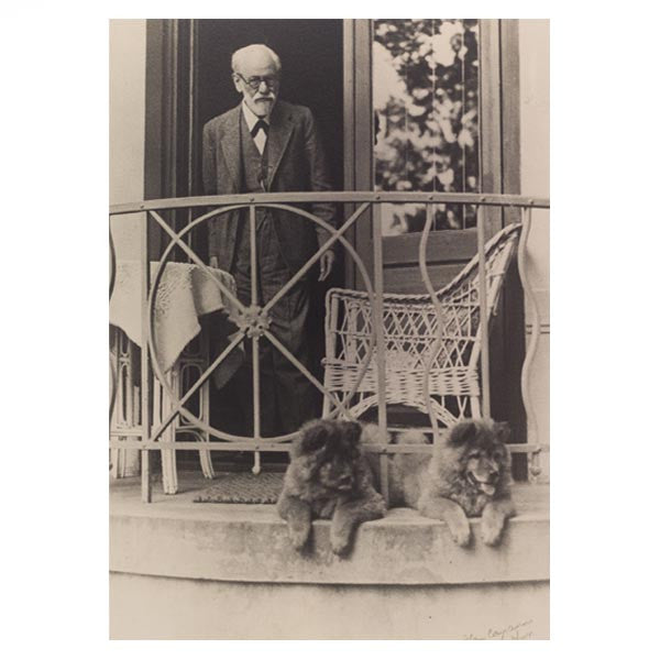 Freud with chows Fo and Tattoun (postcard)