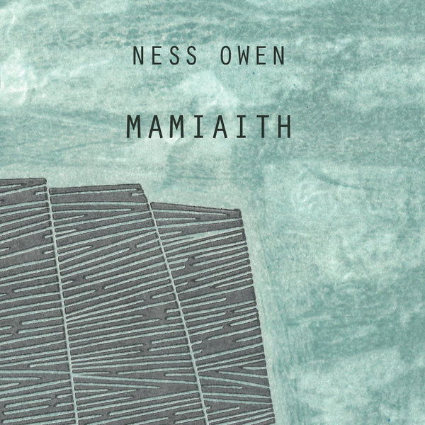 TRANSLATION THURSDAY: POEMS ABOUT LANGUAGE AND PLACE. NESS OWEN AND SIAN NORTHEY ON MAMIAITH
