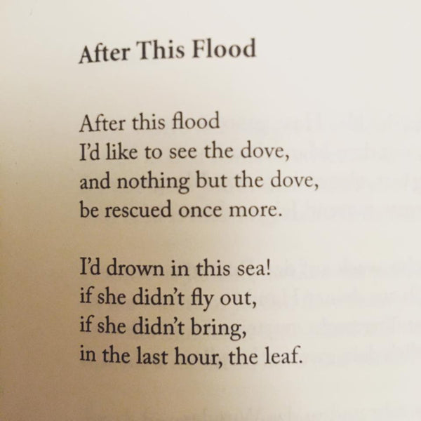 POEM A DAY: AFTER THIS FLOOD