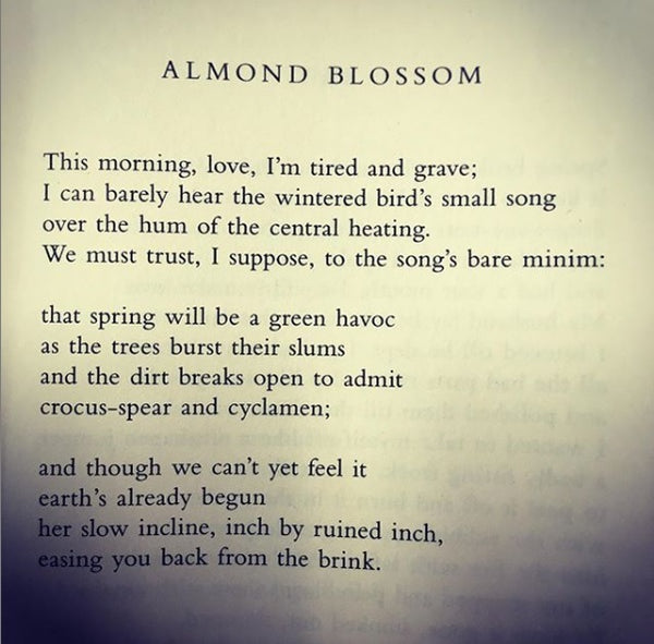 POEM OF THE DAY: FIONA BENSON – The Poetry Book Society