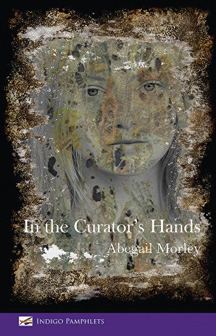 In the Curator's Hands by Abegail Morley