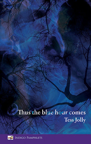 Thus the blue hour comes by Tess Jolly