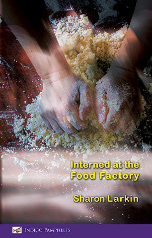 Interned at the Food Factory by Sharon Larkin