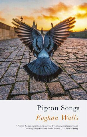 Pigeon Songs by Eoghan Walls