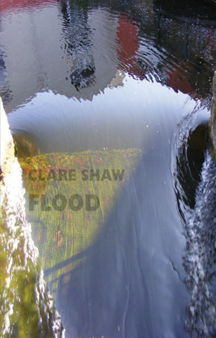 Flood by Clare Shaw