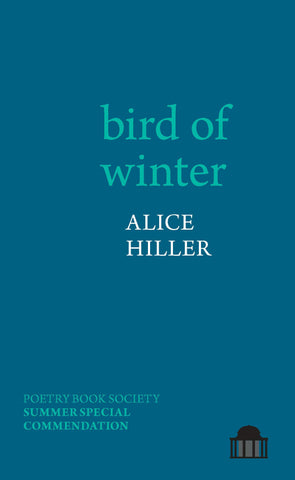 bird of winter by Alice Hiller PBS Summer Special Commendation 2021