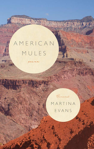 American Mules by Martina Evans PRE-ORDER