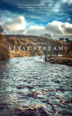 Vital Stream by Lucy Newlyn