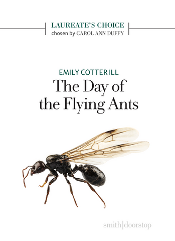 The Day of the Flying Ants by Emily Cotterill
