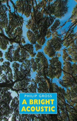 A Bright Acoustic by Philip Gross