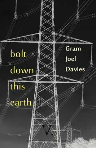 Bolt Down This Earth by Gram Joel Davies