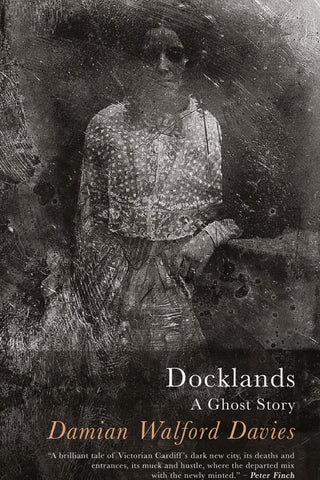 Docklands: A Ghost Story by Damian Walford Davies