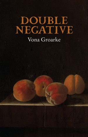 Double Negative by Vona Groake