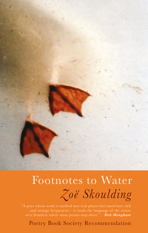 Footnotes to Water by Zoë Skoulding <b><br>PBS Winter Recommendation 2019</b>