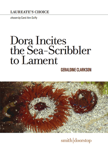 Dora Incites the Sea-Scribbler to Lament by Geraldine Clarkson