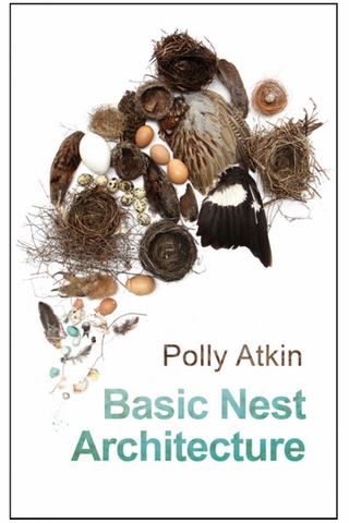Basic Nest Architecture by Polly Atkin