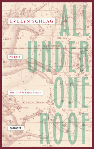 All Under One Roof by Evelyn Schlag, transl. by Karen Leeder <br><b> PBS Recommended Translation Summer 2018 </b>