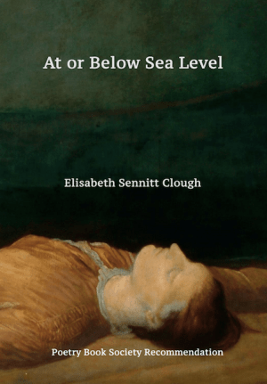 At or Below Sea Level by Elizabeth Sennitt Clough <br><b>PBS Spring Recommendation 2019 </b>
