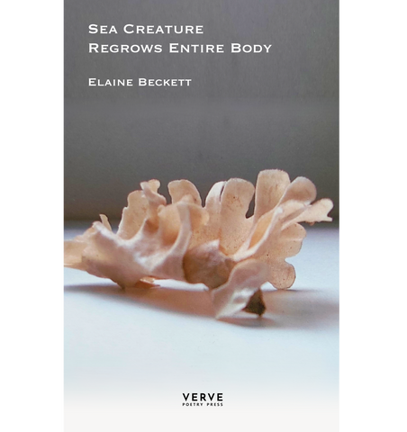 Sea Creature Regrows Entire Body by Elaine Beckett PRE-ORDER