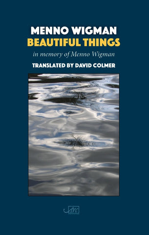 Beautiful Things by Menno Wigman, trans. David Colmer