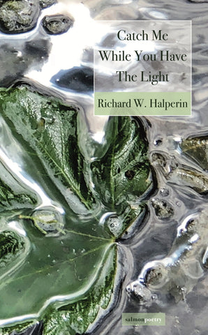 Catch Me While You Have The Light by Richard W. Halperin