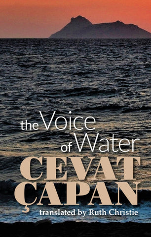 The Voice of Water by Cevat Çapan