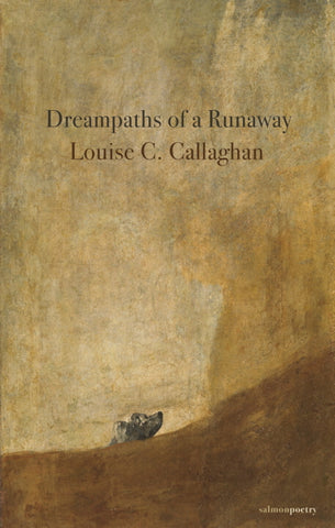 Dreampaths Of A Runaway by Louise C Callaghan