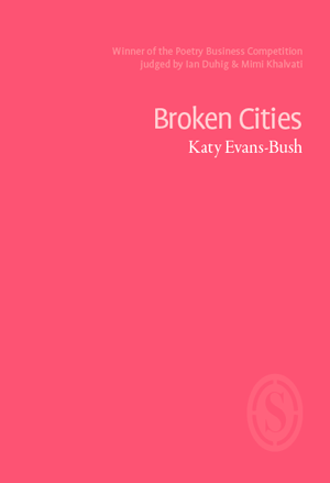 Broken Cities by Katy Evans-Bush