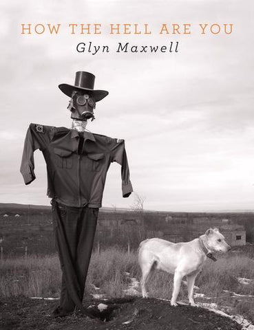 How the Hell Are You by Glyn Maxwell