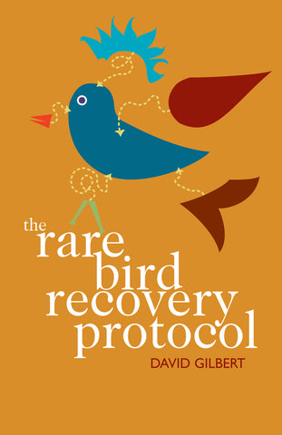 The Rare Bird Recovery Protocol by David Gilbert