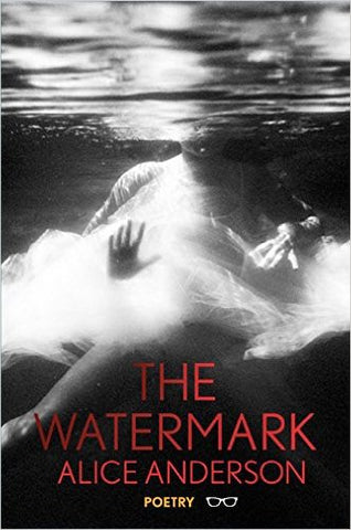 The Watermark by Alice Anderson