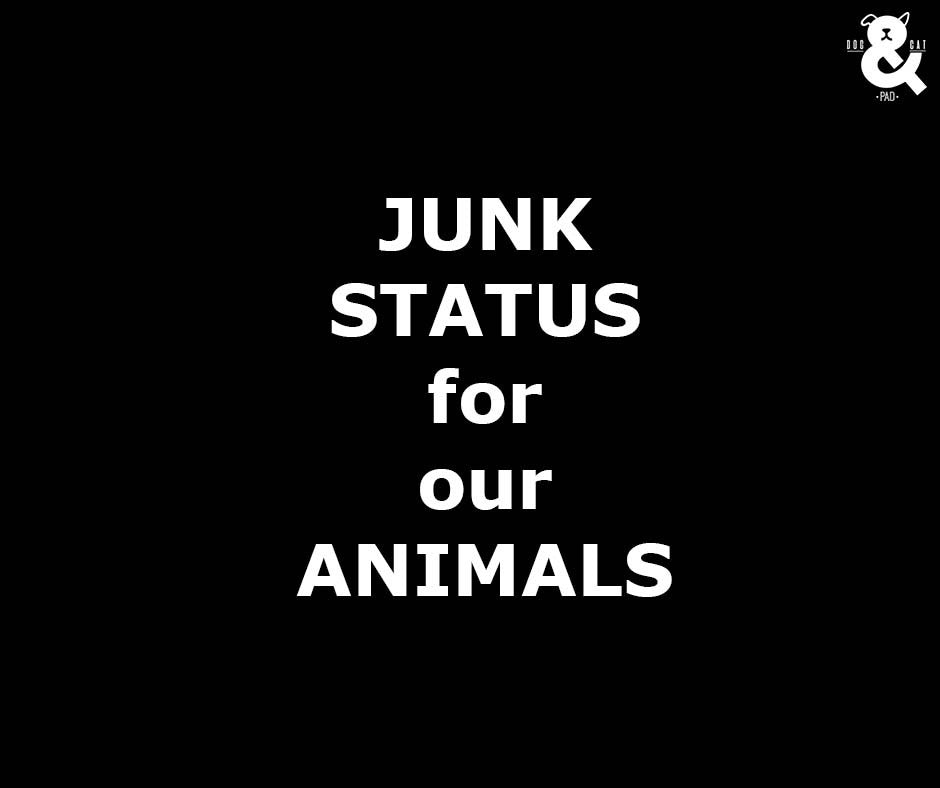 JUNK STATUS FOR OUR ANIMALS