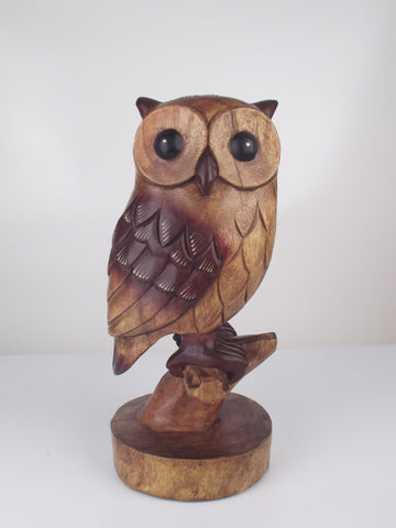 Owl on a Perch