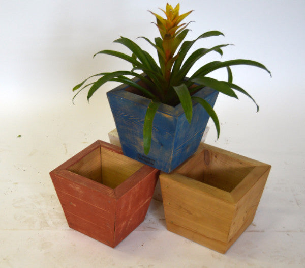 Tapered Cedar Pots in Colors