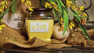 Bring Nature Indoors with Wick